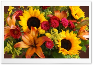 Summer Flowers Bouquet HD Wide Wallpaper for Widescreen