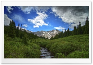Summer In The High Country HD Wide Wallpaper for Widescreen