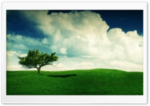 Summer Landscape HD Wide Wallpaper for Widescreen