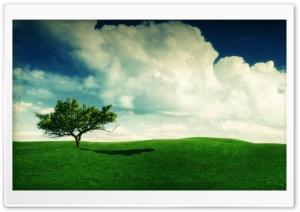 Summer Landscape HD Wide Wallpaper for Widescreen