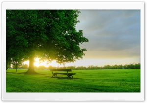 Summer Landscape Nature 7 HD Wide Wallpaper for Widescreen