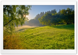 Summer Morning HD Wide Wallpaper for Widescreen