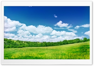 Summer Scenery HD Wide Wallpaper for Widescreen