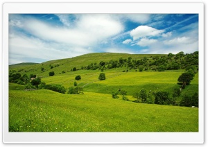 Summer Scenes 6 HD Wide Wallpaper for Widescreen