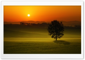 Summer Sunset Landscape HD Wide Wallpaper for Widescreen