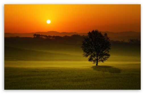 Summer Sunset Landscape ❤ 4K UHD Wallpaper for Wide 16:10 5:3 Widescreen WHXGA WQXGA WUXGA WXGA WGA ; 4K UHD 16:9 Ultra High Definition 2160p 1440p 1080p 900p 720p ; Standard 4:3 5:4 3:2 Fullscreen UXGA XGA SVGA QSXGA SXGA DVGA HVGA HQVGA ( Apple PowerBook G4 iPhone 4 3G 3GS iPod Touch ) ; Smartphone 5:3 WGA ; Tablet 1:1 ; iPad 1/2/Mini ; Mobile 4:3 5:3 3:2 16:9 5:4 - UXGA XGA SVGA WGA DVGA HVGA HQVGA ( Apple PowerBook G4 iPhone 4 3G 3GS iPod Touch ) 2160p 1440p 1080p 900p 720p QSXGA SXGA ;
