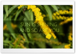 Sun Is Shining HD Wide Wallpaper for Widescreen