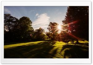 Sun Shining, Nature Ultra HD Wallpaper for 4K UHD Widescreen desktop, tablet & smartphone
