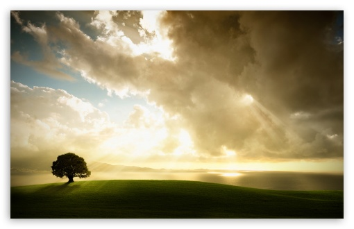 Sun Shining Through The Clouds HD wallpaper for Standard 4:3 5:4 Fullscreen UXGA XGA SVGA QSXGA SXGA ; Wide 16:10 5:3 Widescreen WHXGA WQXGA WUXGA WXGA WGA ; HD 16:9 High Definition WQHD QWXGA 1080p 900p 720p QHD nHD ; Other 3:2 DVGA HVGA HQVGA devices ( Apple PowerBook G4 iPhone 4 3G 3GS iPod Touch ) ; Mobile VGA WVGA iPhone iPad PSP Phone - VGA QVGA Smartphone ( PocketPC GPS iPod Zune BlackBerry HTC Samsung LG Nokia Eten Asus ) WVGA WQVGA Smartphone ( HTC Samsung Sony Ericsson LG Vertu MIO ) HVGA Smartphone ( Apple iPhone iPod BlackBerry HTC Samsung Nokia ) Sony PSP Zune HD Zen ; Tablet 2 Android ; Dual 4:3 5:4 16:10 5:3 16:9 UXGA XGA SVGA QSXGA SXGA WHXGA WQXGA WUXGA WXGA WGA WQHD QWXGA 1080p 900p 720p QHD nHD ;