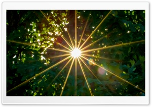 Sunburst HD Wide Wallpaper for Widescreen
