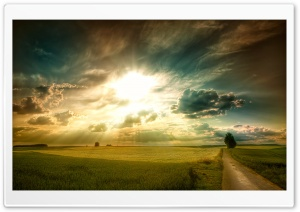 Sunny Afternoon HD Wide Wallpaper for Widescreen