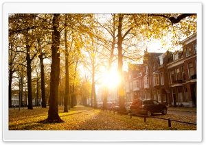 Sunny Autumn Afternoon In Utrecht HD Wide Wallpaper for 4K UHD Widescreen desktop & smartphone