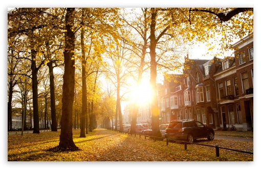 Sunny Autumn Afternoon In Utrecht HD wallpaper for Standard 4:3 5:4 Fullscreen UXGA XGA SVGA QSXGA SXGA ; Wide 16:10 5:3 Widescreen WHXGA WQXGA WUXGA WXGA WGA ; HD 16:9 High Definition WQHD QWXGA 1080p 900p 720p QHD nHD ; Other 3:2 DVGA HVGA HQVGA devices ( Apple PowerBook G4 iPhone 4 3G 3GS iPod Touch ) ; Mobile VGA WVGA iPhone iPad PSP Phone - VGA QVGA Smartphone ( PocketPC GPS iPod Zune BlackBerry HTC Samsung LG Nokia Eten Asus ) WVGA WQVGA Smartphone ( HTC Samsung Sony Ericsson LG Vertu MIO ) HVGA Smartphone ( Apple iPhone iPod BlackBerry HTC Samsung Nokia ) Sony PSP Zune HD Zen ; Tablet 2 Android 3 DVGA HVGA HQVGA devices ( Apple PowerBook G4 iPhone 4 3G 3GS iPod Touch ) ; Dual 4:3 5:4 16:10 5:3 UXGA XGA SVGA QSXGA SXGA WHXGA WQXGA WUXGA WXGA WGA ;
