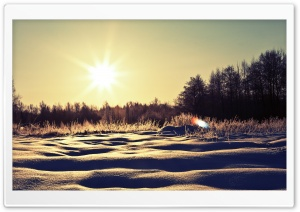 Sunny Snowy Day HD Wide Wallpaper for Widescreen