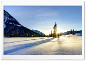 Sunny Winter HD Wide Wallpaper for Widescreen