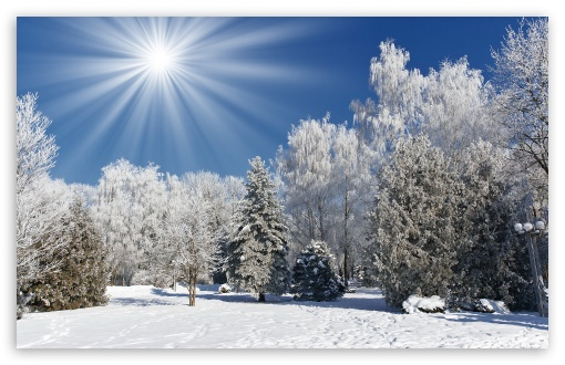 Sunny Winter Day HD wallpaper for Wide 16:10 5:3 Widescreen WHXGA WQXGA WUXGA WXGA WGA ; HD 16:9 High Definition WQHD QWXGA 1080p 900p 720p QHD nHD ; Standard 4:3 5:4 3:2 Fullscreen UXGA XGA SVGA QSXGA SXGA DVGA HVGA HQVGA devices ( Apple PowerBook G4 iPhone 4 3G 3GS iPod Touch ) ; Tablet 1:1 ; iPad 1/2/Mini ; Mobile 4:3 5:3 3:2 16:9 5:4 - UXGA XGA SVGA WGA DVGA HVGA HQVGA devices ( Apple PowerBook G4 iPhone 4 3G 3GS iPod Touch ) WQHD QWXGA 1080p 900p 720p QHD nHD QSXGA SXGA ;