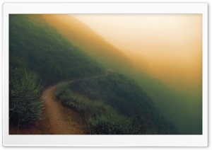 Sunol Regional Wilderness - Foggy Day HD Wide Wallpaper for Widescreen