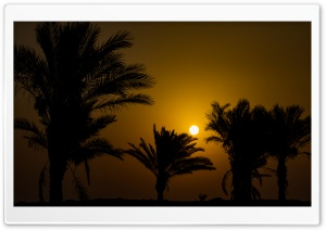 Sunrise HD Wide Wallpaper for Widescreen
