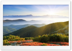 Sunrise Forest Mountains HD Wide Wallpaper for 4K UHD Widescreen desktop & smartphone