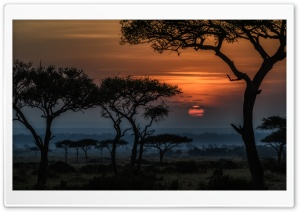 Sunrise in Masai Mara, Kenya, Africa HD Wide Wallpaper for Widescreen