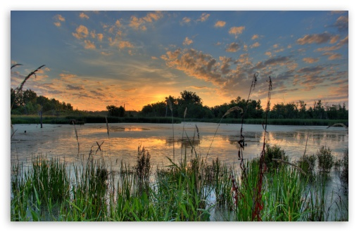 Sunrise Over a Pond in the Minnesota River National Wildlife Refuge UltraHD Wallpaper for Wide 16:10 5:3 Widescreen WHXGA WQXGA WUXGA WXGA WGA ; 8K UHD TV 16:9 Ultra High Definition 2160p 1440p 1080p 900p 720p ; UHD 16:9 2160p 1440p 1080p 900p 720p ; Standard 4:3 5:4 3:2 Fullscreen UXGA XGA SVGA QSXGA SXGA DVGA HVGA HQVGA ( Apple PowerBook G4 iPhone 4 3G 3GS iPod Touch ) ; Tablet 1:1 ; iPad 1/2/Mini ; Mobile 4:3 5:3 3:2 16:9 5:4 - UXGA XGA SVGA WGA DVGA HVGA HQVGA ( Apple PowerBook G4 iPhone 4 3G 3GS iPod Touch ) 2160p 1440p 1080p 900p 720p QSXGA SXGA ;