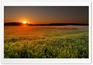 Sunrise Over The Flied HD Wide Wallpaper for Widescreen