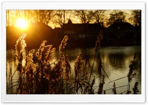Sunset - Hengelo, The Netherlands HD Wide Wallpaper for 4K UHD Widescreen desktop & smartphone
