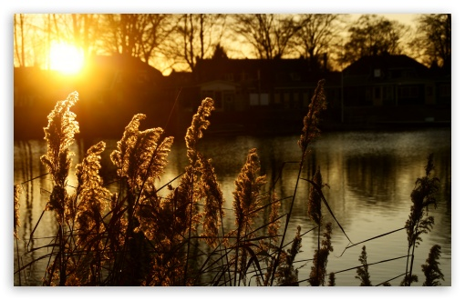 Sunset - Hengelo, The Netherlands HD wallpaper for Standard 4:3 5:4 Fullscreen UXGA XGA SVGA QSXGA SXGA ; Wide 16:10 5:3 Widescreen WHXGA WQXGA WUXGA WXGA WGA ; HD 16:9 High Definition WQHD QWXGA 1080p 900p 720p QHD nHD ; Other 3:2 DVGA HVGA HQVGA devices ( Apple PowerBook G4 iPhone 4 3G 3GS iPod Touch ) ; Mobile VGA WVGA iPhone iPad PSP Phone - VGA QVGA Smartphone ( PocketPC GPS iPod Zune BlackBerry HTC Samsung LG Nokia Eten Asus ) WVGA WQVGA Smartphone ( HTC Samsung Sony Ericsson LG Vertu MIO ) HVGA Smartphone ( Apple iPhone iPod BlackBerry HTC Samsung Nokia ) Sony PSP Zune HD Zen ; Tablet 2 Android 3 DVGA HVGA HQVGA devices ( Apple PowerBook G4 iPhone 4 3G 3GS iPod Touch ) ; Dual 4:3 5:4 UXGA XGA SVGA QSXGA SXGA ;