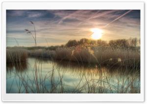 Sunset at Bieslandse Forest Ultra HD Wallpaper for 4K UHD Widescreen desktop, tablet & smartphone