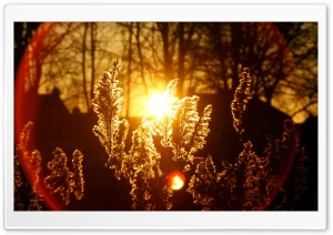 Sunset Flare HD Wide Wallpaper for Widescreen