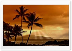 Sunset In The Tropics HD Wide Wallpaper for Widescreen