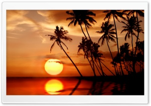 Sunset In Tropical Paradise HD Wide Wallpaper for 4K UHD Widescreen desktop & smartphone
