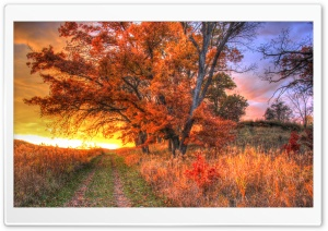 Sunset on the Hiking Trail HD Wide Wallpaper for Widescreen