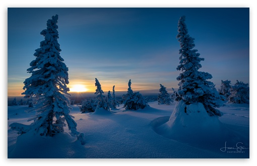 Sunset, Riisitunturi, Trees, Winter, Finland UltraHD Wallpaper for Wide 16:10 5:3 Widescreen WHXGA WQXGA WUXGA WXGA WGA ; UltraWide 21:9 24:10 ; 8K UHD TV 16:9 Ultra High Definition 2160p 1440p 1080p 900p 720p ; UHD 16:9 2160p 1440p 1080p 900p 720p ; Smartphone 3:2 5:3 DVGA HVGA HQVGA ( Apple PowerBook G4 iPhone 4 3G 3GS iPod Touch ) WGA ; iPad 1/2/Mini ; Mobile 4:3 5:3 3:2 16:9 5:4 - UXGA XGA SVGA WGA DVGA HVGA HQVGA ( Apple PowerBook G4 iPhone 4 3G 3GS iPod Touch ) 2160p 1440p 1080p 900p 720p QSXGA SXGA ;