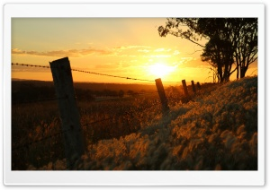 Sunset Through Barbed Wire-Warwick QLD HD Wide Wallpaper for Widescreen