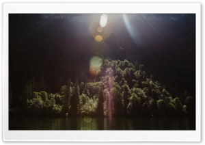 Sunshine, Forest Trees, Lake Ultra HD Wallpaper for 4K UHD Widescreen desktop, tablet & smartphone