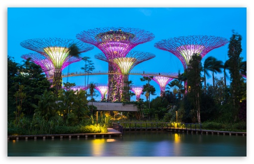 Supertree Grove, Gardens by the Bay, Singapore ❤ 4K UHD Wallpaper for Wide 16:10 5:3 Widescreen WHXGA WQXGA WUXGA WXGA WGA ; UltraWide 21:9 24:10 ; 4K UHD 16:9 Ultra High Definition 2160p 1440p 1080p 900p 720p ; UHD 16:9 2160p 1440p 1080p 900p 720p ; Standard 4:3 5:4 3:2 Fullscreen UXGA XGA SVGA QSXGA SXGA DVGA HVGA HQVGA ( Apple PowerBook G4 iPhone 4 3G 3GS iPod Touch ) ; Smartphone 16:9 3:2 5:3 2160p 1440p 1080p 900p 720p DVGA HVGA HQVGA ( Apple PowerBook G4 iPhone 4 3G 3GS iPod Touch ) WGA ; iPad 1/2/Mini ; Mobile 4:3 5:3 3:2 16:9 5:4 - UXGA XGA SVGA WGA DVGA HVGA HQVGA ( Apple PowerBook G4 iPhone 4 3G 3GS iPod Touch ) 2160p 1440p 1080p 900p 720p QSXGA SXGA ; Dual 16:10 5:3 16:9 4:3 5:4 3:2 WHXGA WQXGA WUXGA WXGA WGA 2160p 1440p 1080p 900p 720p UXGA XGA SVGA QSXGA SXGA DVGA HVGA HQVGA ( Apple PowerBook G4 iPhone 4 3G 3GS iPod Touch ) ; Triple 16:10 5:3 16:9 4:3 5:4 3:2 WHXGA WQXGA WUXGA WXGA WGA 2160p 1440p 1080p 900p 720p UXGA XGA SVGA QSXGA SXGA DVGA HVGA HQVGA ( Apple PowerBook G4 iPhone 4 3G 3GS iPod Touch ) ;