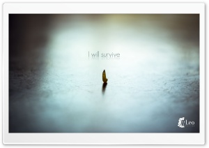 Survive HD Wide Wallpaper for Widescreen