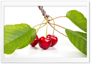 Sweet Red Cherries Branch Ultra HD Wallpaper for 4K UHD Widescreen desktop, tablet & smartphone