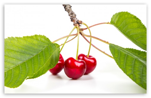 Sweet Red Cherries Branch UltraHD Wallpaper for Wide 16:10 5:3 Widescreen WHXGA WQXGA WUXGA WXGA WGA ; UltraWide 21:9 ; 8K UHD TV 16:9 Ultra High Definition 2160p 1440p 1080p 900p 720p ; Standard 4:3 5:4 3:2 Fullscreen UXGA XGA SVGA QSXGA SXGA DVGA HVGA HQVGA ( Apple PowerBook G4 iPhone 4 3G 3GS iPod Touch ) ; Smartphone 16:9 3:2 5:3 2160p 1440p 1080p 900p 720p DVGA HVGA HQVGA ( Apple PowerBook G4 iPhone 4 3G 3GS iPod Touch ) WGA ; Tablet 1:1 ; iPad 1/2/Mini ; Mobile 4:3 5:3 3:2 16:9 5:4 - UXGA XGA SVGA WGA DVGA HVGA HQVGA ( Apple PowerBook G4 iPhone 4 3G 3GS iPod Touch ) 2160p 1440p 1080p 900p 720p QSXGA SXGA ;