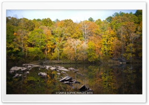 Sweetwater Creek Park HD Wide Wallpaper for Widescreen