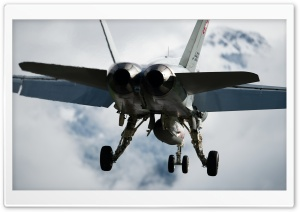 Swiss Hornet HD Wide Wallpaper for Widescreen