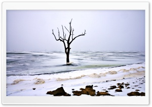Symbol Of Last Winter HD Wide Wallpaper for Widescreen