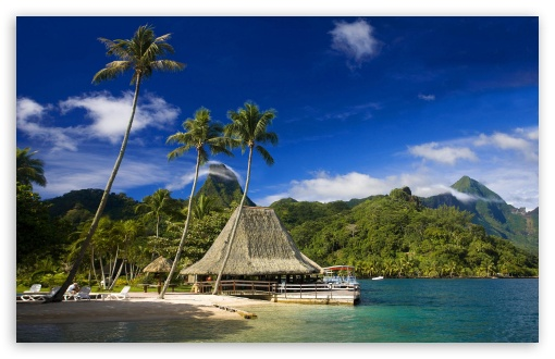 Tahiti Island HD wallpaper for Wide 16:10 5:3 Widescreen WHXGA WQXGA WUXGA WXGA WGA ; HD 16:9 High Definition WQHD QWXGA 1080p 900p 720p QHD nHD ; Standard 4:3 5:4 3:2 Fullscreen UXGA XGA SVGA QSXGA SXGA DVGA HVGA HQVGA devices ( Apple PowerBook G4 iPhone 4 3G 3GS iPod Touch ) ; Tablet 1:1 ; iPad 1/2/Mini ; Mobile 4:3 5:3 3:2 16:9 5:4 - UXGA XGA SVGA WGA DVGA HVGA HQVGA devices ( Apple PowerBook G4 iPhone 4 3G 3GS iPod Touch ) WQHD QWXGA 1080p 900p 720p QHD nHD QSXGA SXGA ;