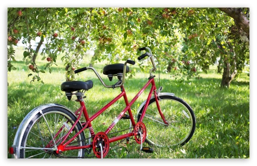Tandem Bike ❤ 4K UHD Wallpaper for Wide 16:10 5:3 Widescreen WHXGA WQXGA WUXGA WXGA WGA ; 4K UHD 16:9 Ultra High Definition 2160p 1440p 1080p 900p 720p ; UHD 16:9 2160p 1440p 1080p 900p 720p ; Standard 4:3 5:4 3:2 Fullscreen UXGA XGA SVGA QSXGA SXGA DVGA HVGA HQVGA ( Apple PowerBook G4 iPhone 4 3G 3GS iPod Touch ) ; Tablet 1:1 ; iPad 1/2/Mini ; Mobile 4:3 5:3 3:2 16:9 5:4 - UXGA XGA SVGA WGA DVGA HVGA HQVGA ( Apple PowerBook G4 iPhone 4 3G 3GS iPod Touch ) 2160p 1440p 1080p 900p 720p QSXGA SXGA ;