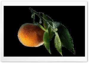 Tangerine Fruit Underwater HD Wide Wallpaper for Widescreen