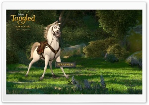 Tangled Maximus HD Wide Wallpaper for Widescreen