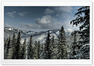 Tatra Mountains HD Wide Wallpaper for Widescreen
