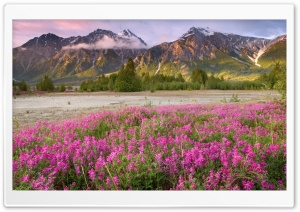 Tatshenshini Alsek Wilderness British Columbia Canada HD Wide Wallpaper for Widescreen