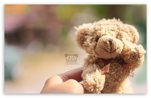 Teddy ❤ 4K UHD Wallpaper for Wide 16:10 5:3 Widescreen WHXGA WQXGA WUXGA WXGA WGA ; 4K UHD 16:9 Ultra High Definition 2160p 1440p 1080p 900p 720p ; UHD 16:9 2160p 1440p 1080p 900p 720p ; Standard 4:3 5:4 3:2 Fullscreen UXGA XGA SVGA QSXGA SXGA DVGA HVGA HQVGA ( Apple PowerBook G4 iPhone 4 3G 3GS iPod Touch ) ; Tablet 1:1 ; iPad 1/2/Mini ; Mobile 4:3 5:3 3:2 16:9 5:4 - UXGA XGA SVGA WGA DVGA HVGA HQVGA ( Apple PowerBook G4 iPhone 4 3G 3GS iPod Touch ) 2160p 1440p 1080p 900p 720p QSXGA SXGA ;